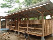 Kandang Kecil Untuk Memulai Beternak Kambing Etawa