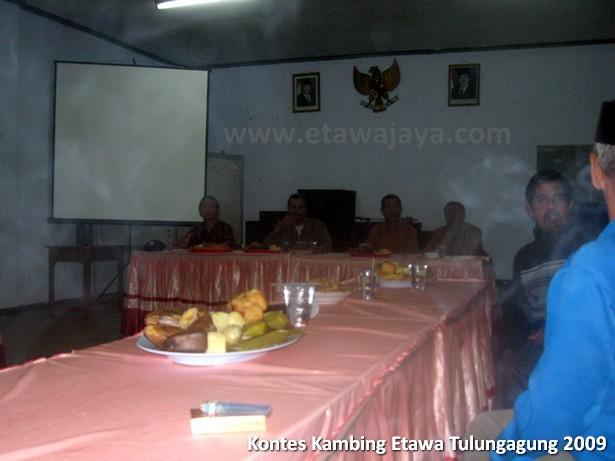 kontes-kambing-etawa-tulungagung-2009