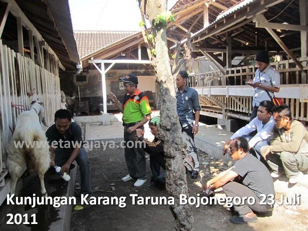 kunjungan-karang-taruna-bojonegoro-etawa-jaya