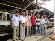 Kunjungan KUD Tisnogambar Jember 21 Oktober 2011