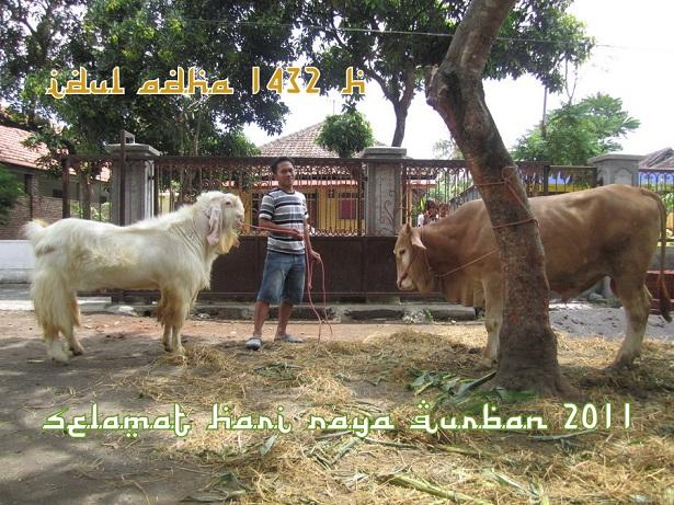 Selamat Hari Raya Idul Adha 2015