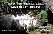 Dibuka Kuota Pengiriman Massal ke Jawa Barat & Bekasi Juni 2015